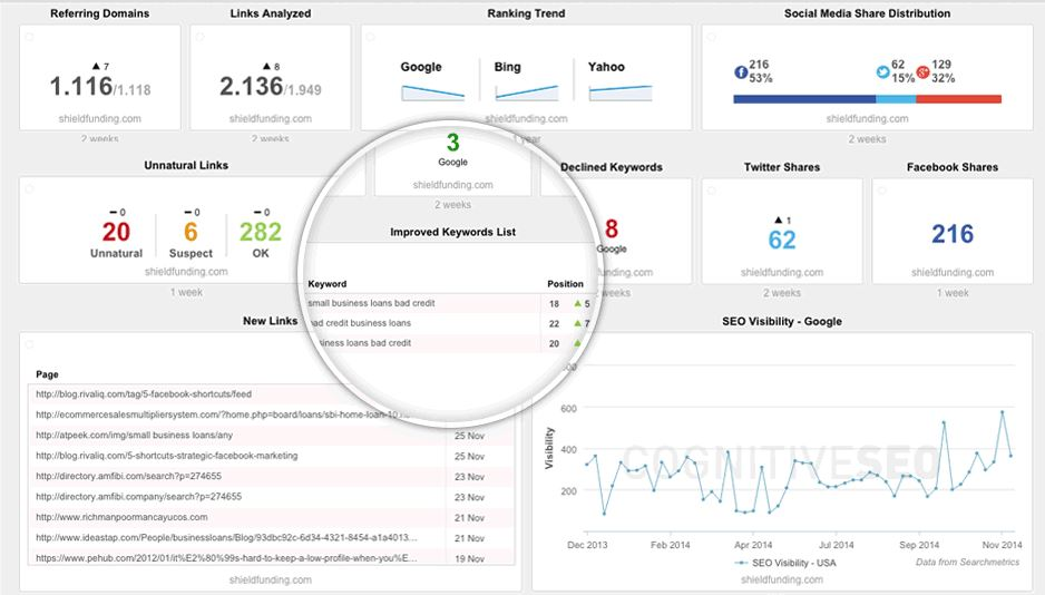 cognitiveseo-dashboard